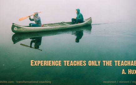 """Experience teaches only the teachable"" A. Huxley"